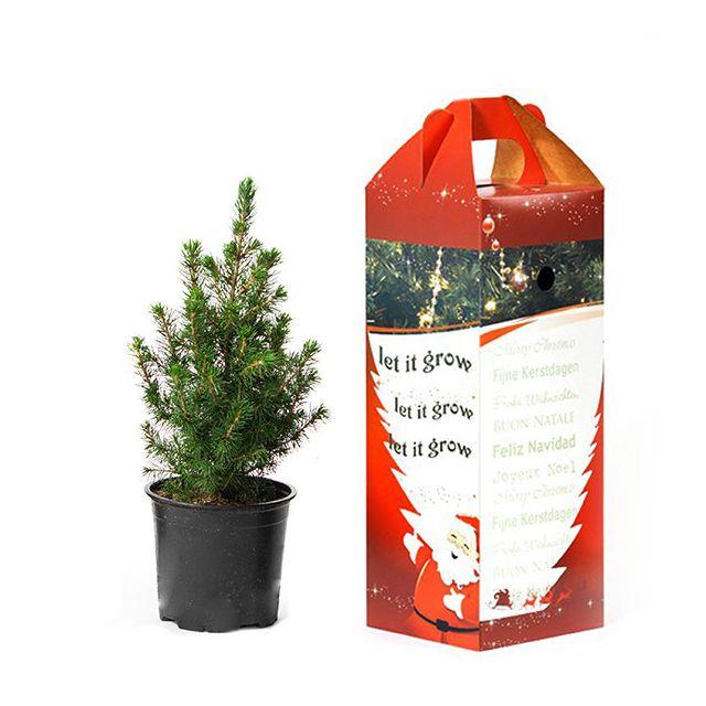 Bureau kerstboompje in cadeau verpakking