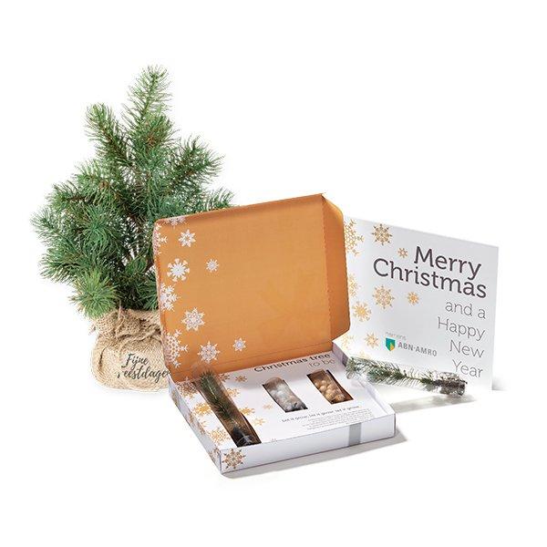 kerstboom in koker