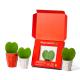 Leafplantje - rood