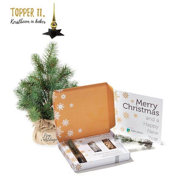 Topper 11