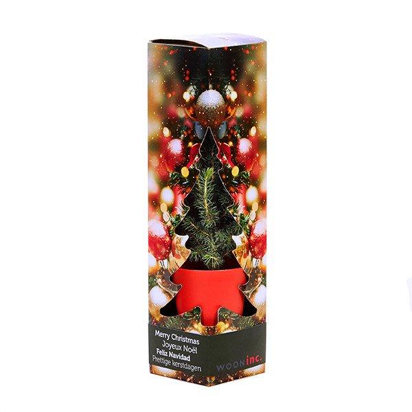 Kerstboom in geschenkdoos + banderol