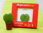 All you need is leaf - Hallmark